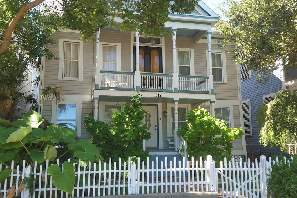 Tree,Deck,Porch,Fence,Palm Tree
