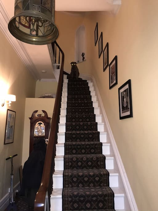 Entry to your personal space. Tweezer ,our dog, is at the top of the stairs. He will not be in your space but may say hi.