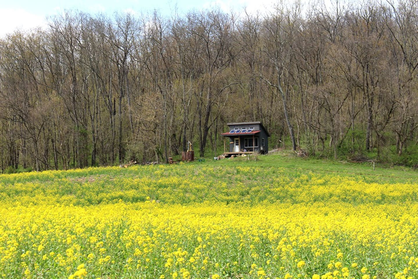 Off-grid, solar- powered, tiny-house seclusion! Springtime at Redbud Farm Nature Reserve.