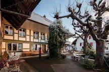 Terrasse with chestnut trees - Terrasse mit Kastanienbäumen