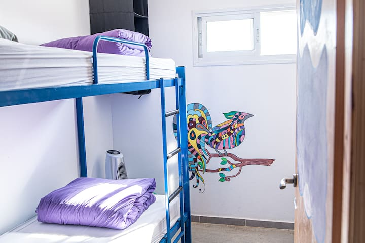 Golan Heights Hostel - Twin Bunk Bed