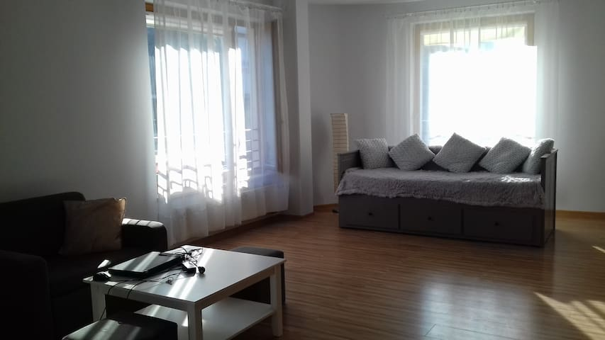 Sunny & cosy apartament in the Cracow center