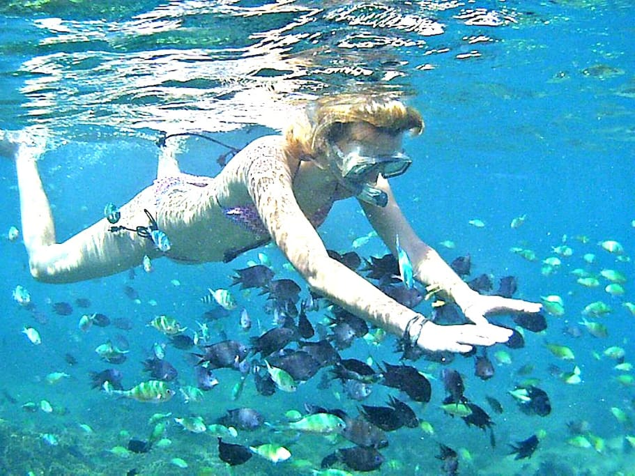 Gili Gede island - Yut Inn Flower Paradise Resort & Restaurant