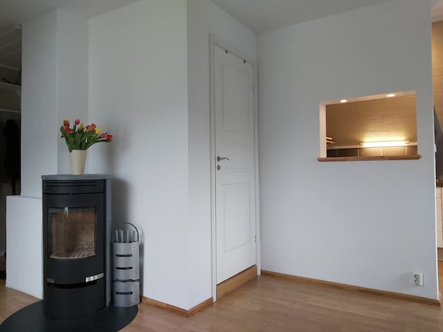 Renovated flat with free parking
