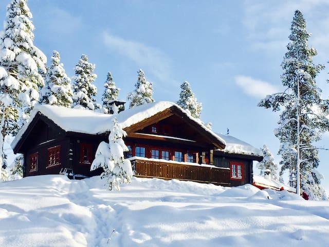 Cozy cabin Jotunheimen/Lemonsjøen
