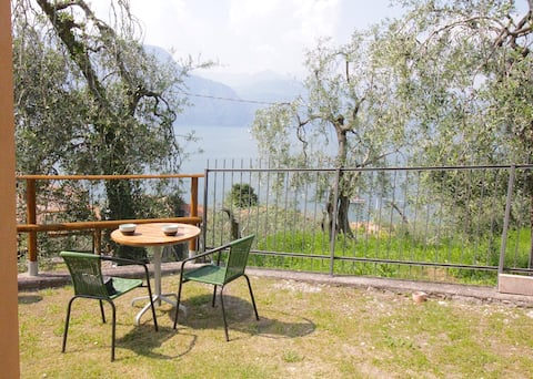 Fantastic apartment with garden ( Spinarol )