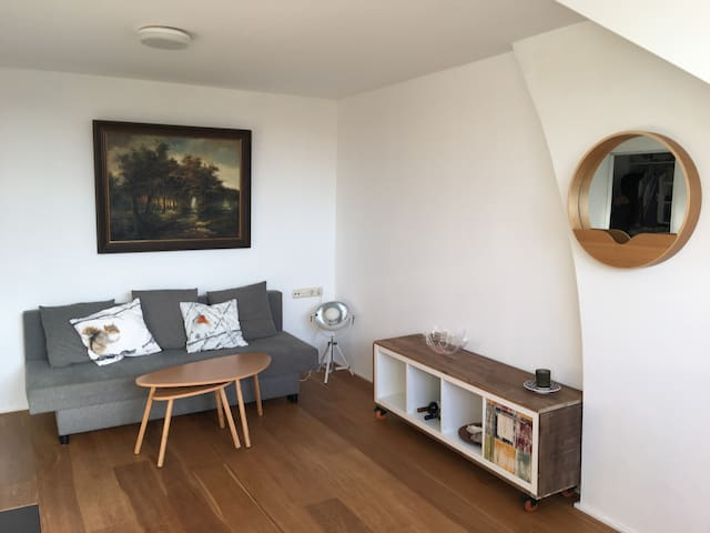 Centrally located, spacious and cozy apartment