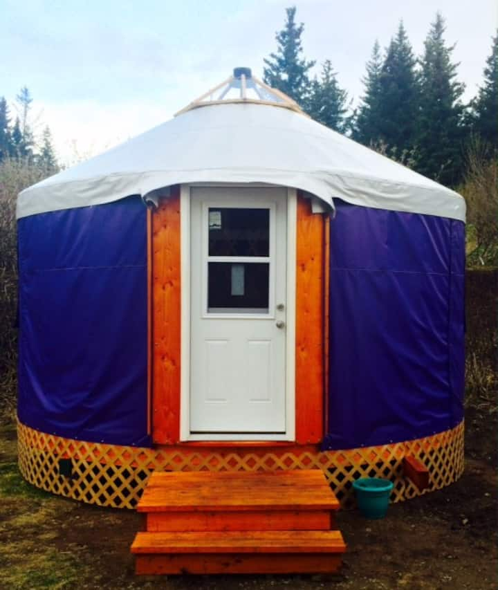 The Purple Yurt