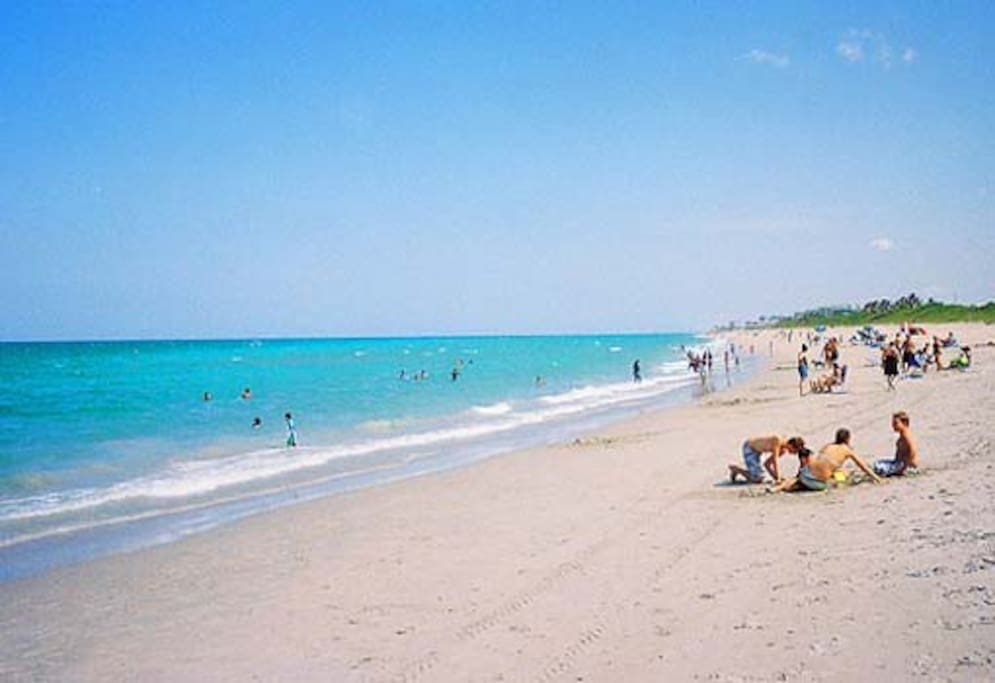 Rooms For Rent In Juno Beach Florida