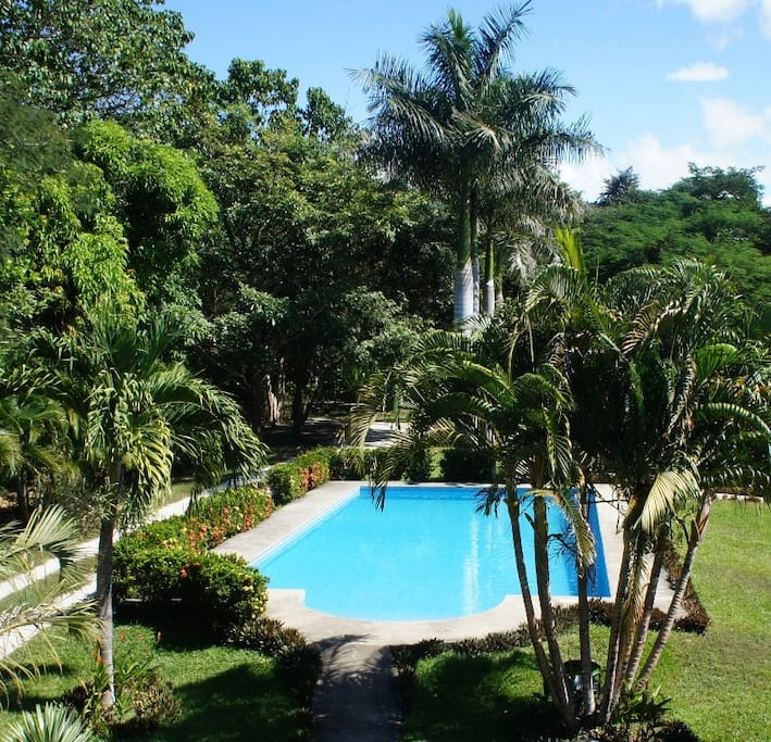 Explore Paradise. Linda Vista Cottage with a shared gorgeous pool.