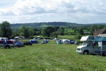 Pilton Hill Camping - Shepton Mallet - Namiot