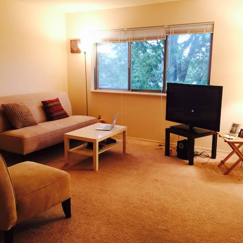 Spacious place to have a good rest! - Meridian charter Township