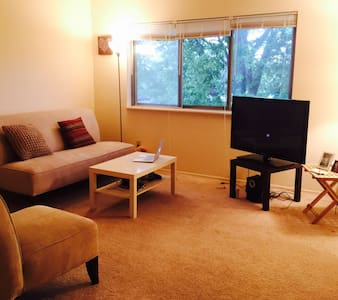 Spacious place to have a good rest! - Meridian charter Township - Apartment