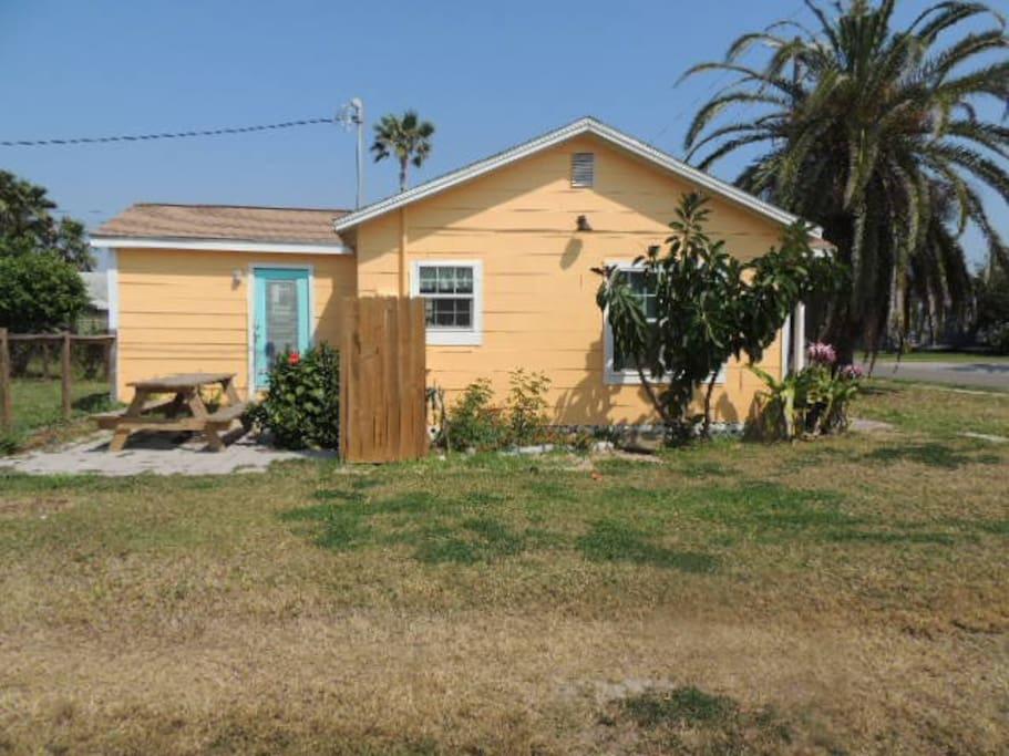 Yard, Building, Cottage, Palm Tree, Tree