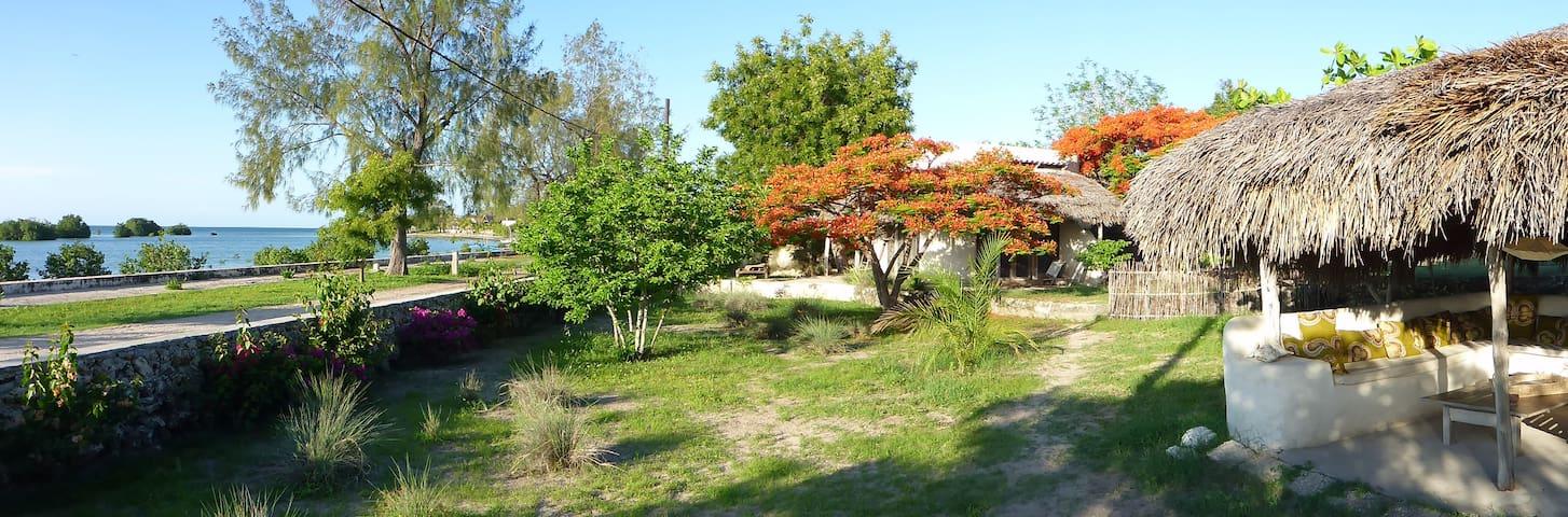 Bungalow Massemba @ Baobibo - Casa de Hospedes