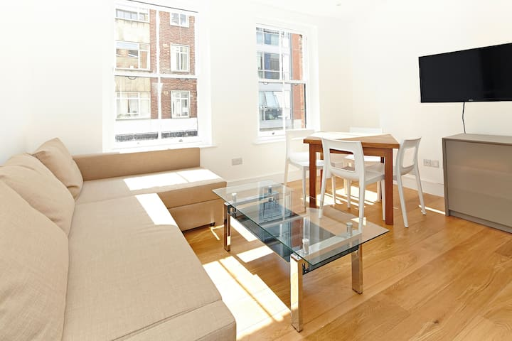Elegant Two Bedroom Apartment in the city centre - London - Apartment