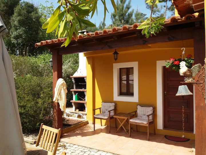 A Casa do Ribeiro - Alojamento Local