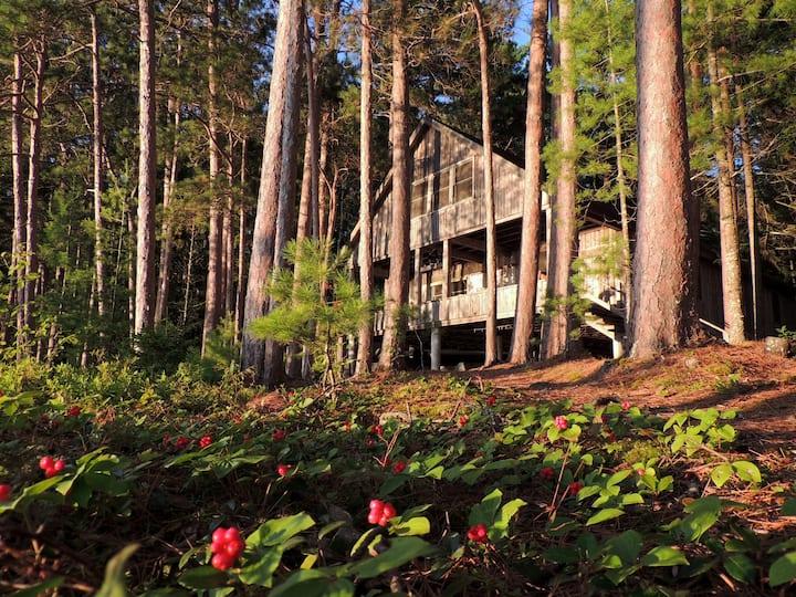 Pristine Lake Cabin in Maine