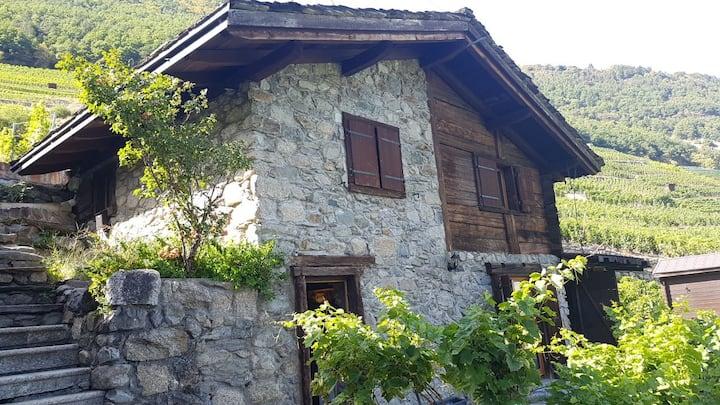 Mazot typique du Valais au milieu des vignes