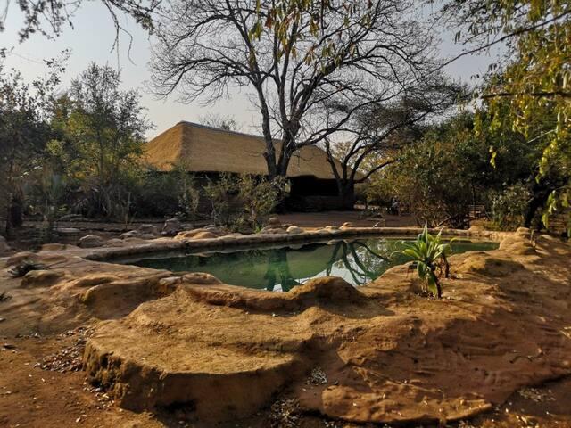 Nthakeni Bush and River camp Mupani tent camp