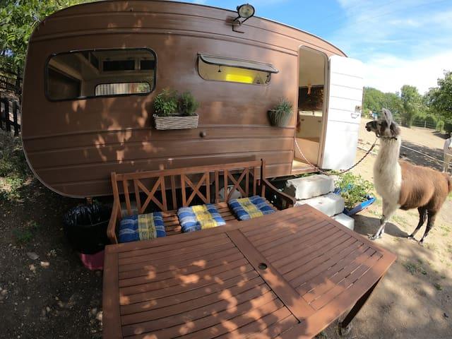 Netradičně v karavanu na ranči.