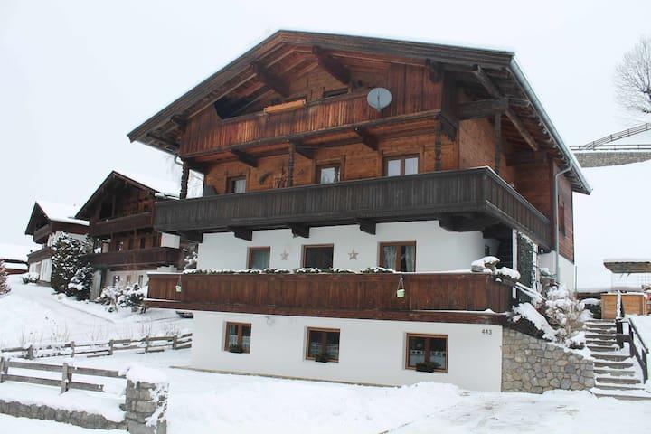 Wohnung Alpbachtal Sagtaler Spitze Alpbach