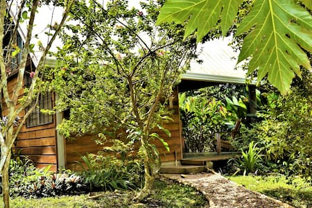 Hummingbird Rest · Hummingbird Rest A Self Catering Tropical Paradise
