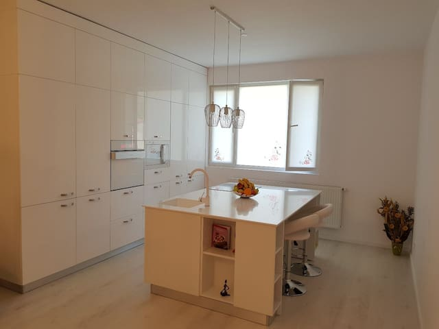 Cozy Guest Apartment - Floresti