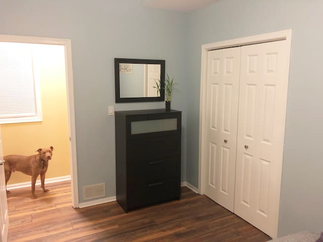 Comfortable, Friendly Wicker Park Rental (Room #1)