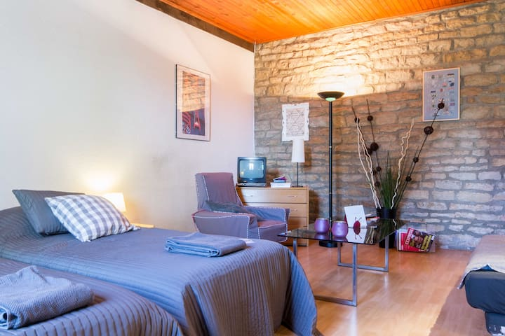 Appartement cosy (45m²)  WIFI + garage possible