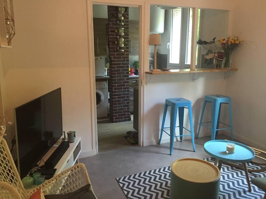 Living Room / Salon bis