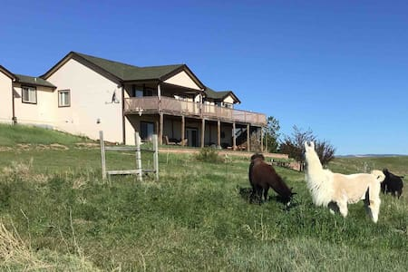 Double K Diamond Llama/Alpaca Ranch