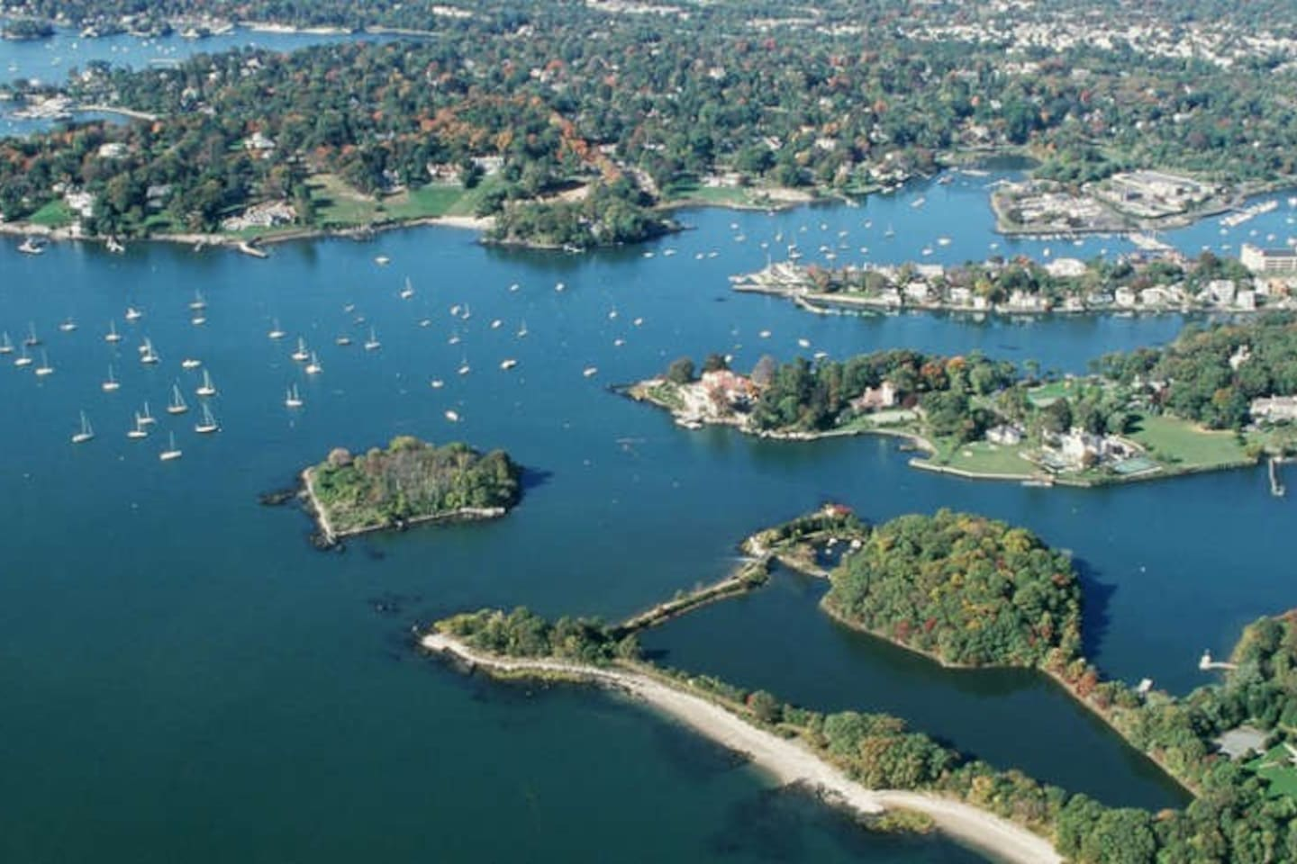 My Bruce Park Neighborhood. Walk to water and Indian Harbor Yacht Club.