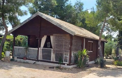 Agradable cabaña de madera.
