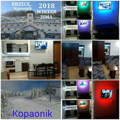FOUR SEASONS BRZECE Kopaonik
