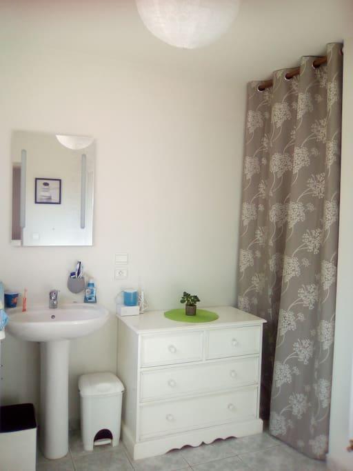 Salle de bain privative (nous avons une deuxième sdb à l'étage)