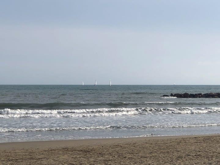 Appartement bord de plage première ligne