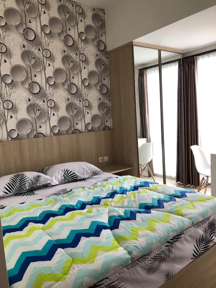 Comfortable and convenient stay near University