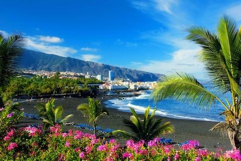GARAGE-LOFT with Wi-Fi Puerto de la Cruz, Tenerife