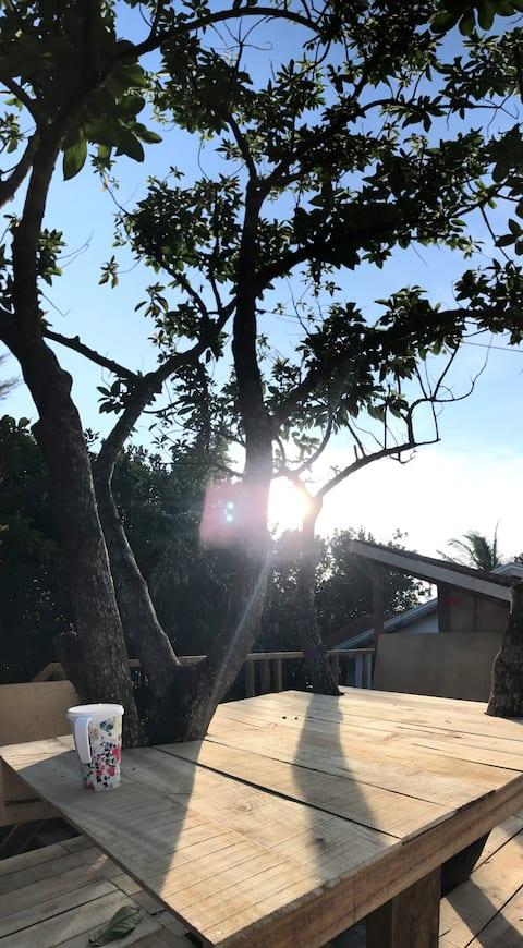 Ira's Treehouse