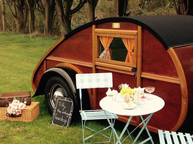 Tilly the Teardrop Trailer.