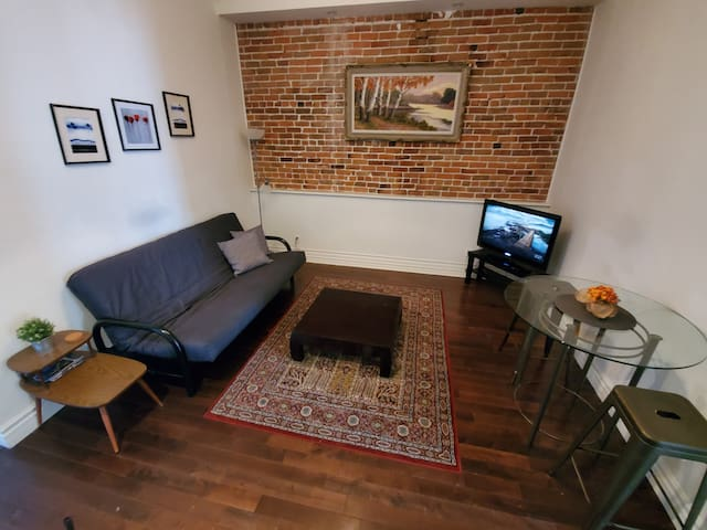 Beautiful 2 bdr apartment Downtown - free parking