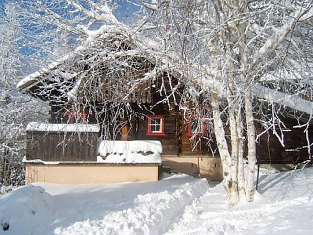 Изба деда мороза - veshki - Dom