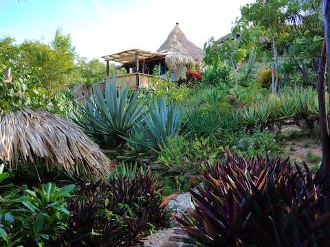El Organo - bungalows con cocina en Zipolite