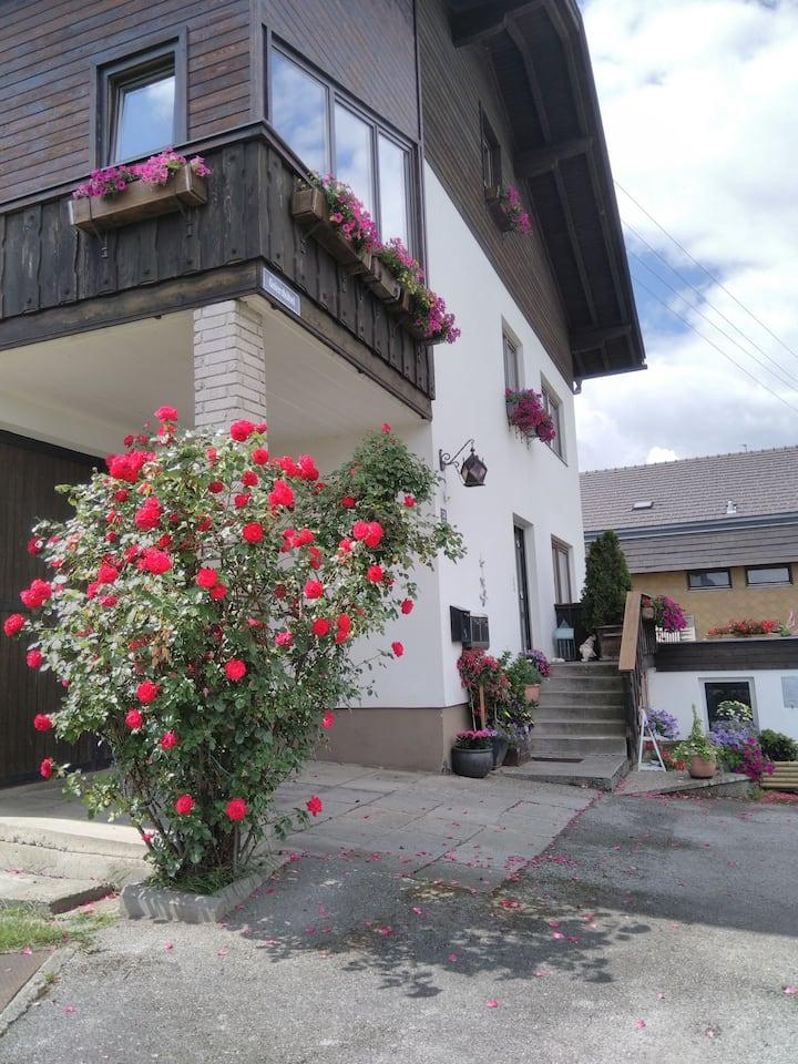 """Ferienwohnung """" Moni"""" Nähe Innsbruck"""