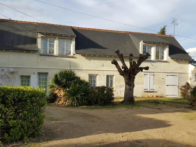 Gite GAIA, pour professionels et vacanciers - Chouzé-sur-Loire - Appartement