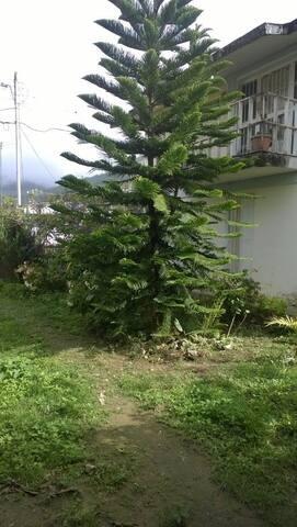 Acogida placentera del Parque Caripe el Guácharo