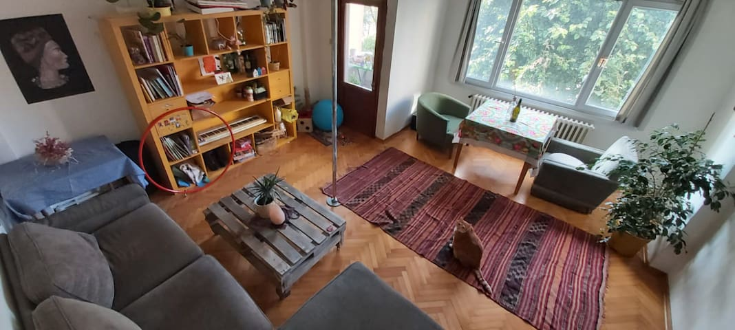 Colorful and Calm Room in Kadıköy with Greenery