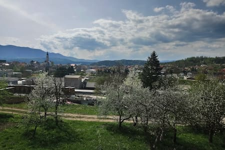 Warm and cosy apartment with a view of Cerknica