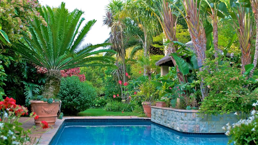 Treetops: Self Catering Suite - Cape Town - Daire